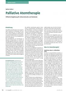 Screenshot der pdf-Datei